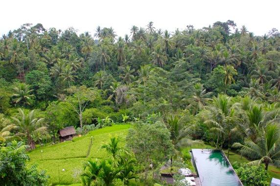 Guide to Bali | www.TheArtesianProject.com