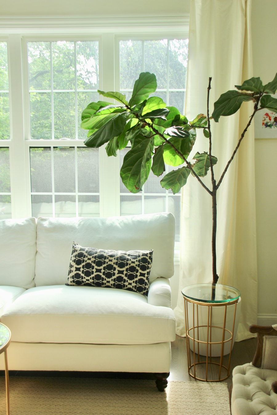 neutral living room windows white sofa couch front room birch lane montgomery sofa